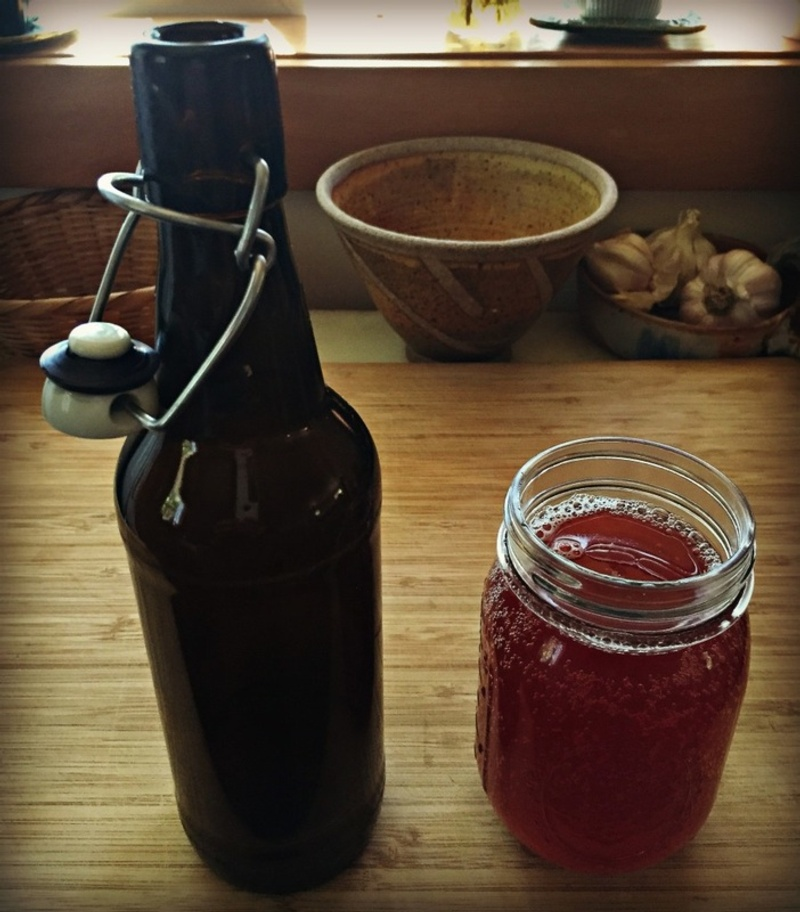 Organic Kombucha and Water Kefir